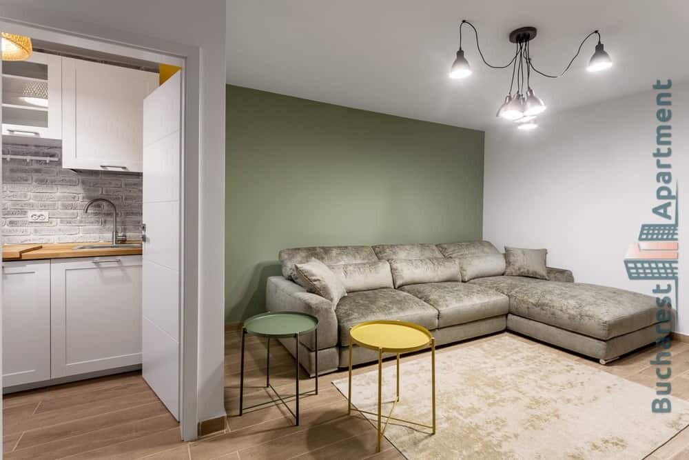 modern studio apartment with grey sofa and green wall