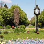 flowers and vintage watch at the entrance of cismigiu park